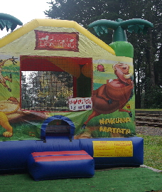 Jumping Castle Childrens fun
